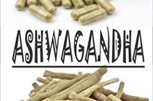 ASHWAGANDHA Everything you need to know about Ashwagandha English Edition 310x205 - ASHWAGANDHA: Everything you need to know about Ashwagandha (English Edition)